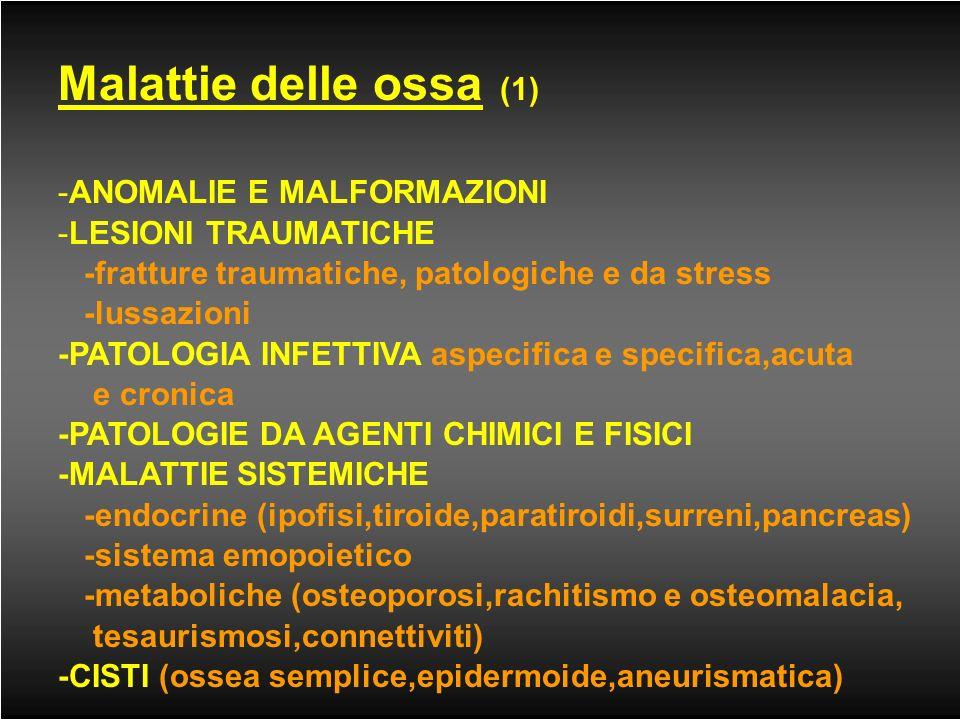 APPARATO OSTEO-ARTICOLARE: LE INDAGINI RADIOLOGICHE -Esame radiografico -Tomografia Computerizzata -Risonanza Magnetica -Ecografia -Densitometria -Sci