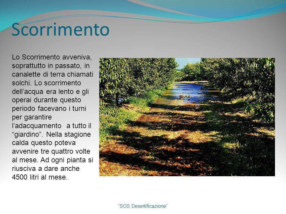 Scorrimento SOS Desertificazione Lo Scorrimento avveniva, soprattutto in passato, in canalette di terra chiamati solchi.