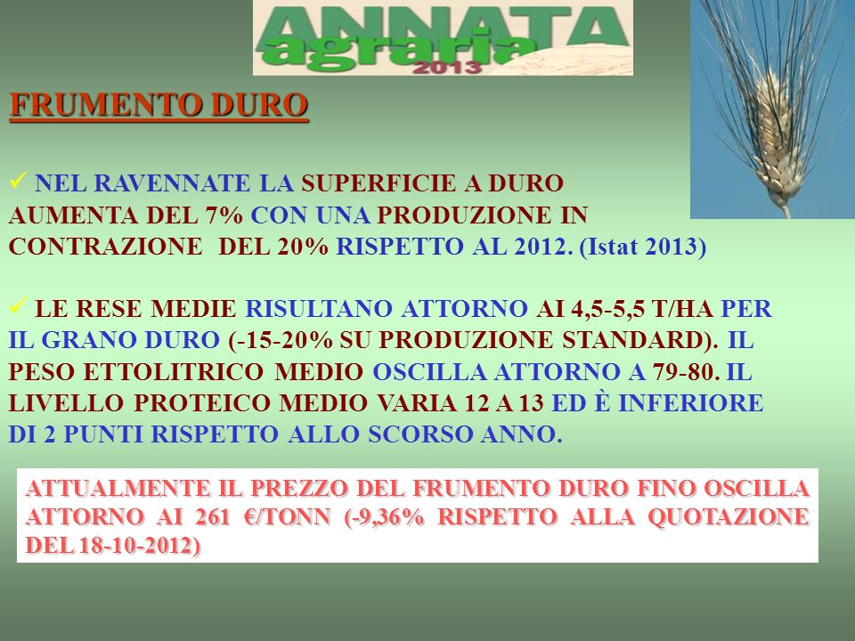 FRUMENTO DURO NEL RAVENNATE LA SUPERFICIE A DURO AUMENTA DEL 7% CON UNA PRODUZIONE IN CONTRAZIONE DEL 20% RISPETTO AL 2012.