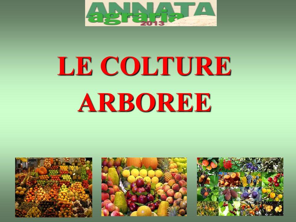 LE COLTURE ARBOREE