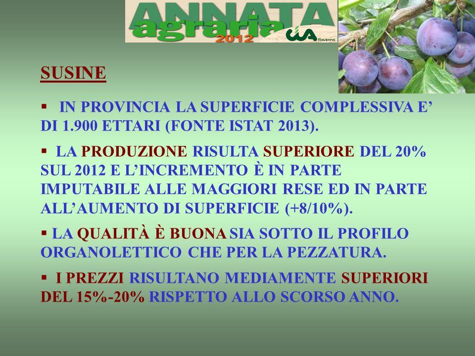 SUSINE IN PROVINCIA LA SUPERFICIE COMPLESSIVA E DI 1.900 ETTARI (FONTE ISTAT 2013).