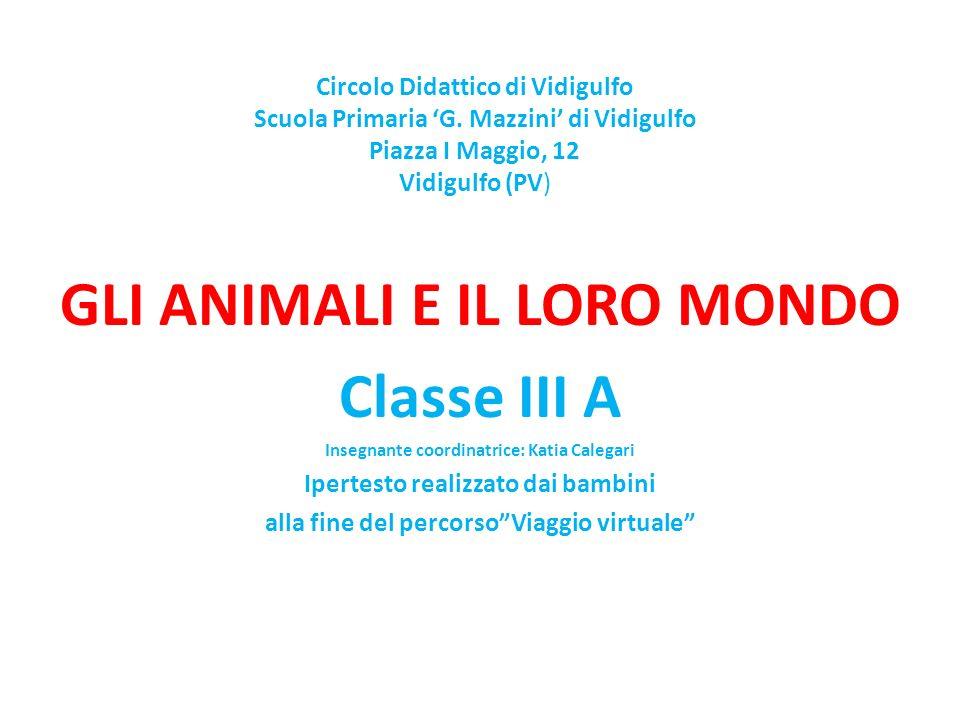 Circolo Didattico di Vidigulfo Scuola Primaria G. Mazzini di Vidigulfo Piazza I Maggio, 12 Vidigulfo (PV) GLI ANIMALI E IL LORO MONDO Classe III A Ins