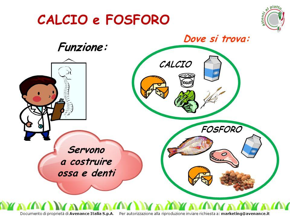 Documento di proprietà di Avenance Italia S.p.A. Per autorizzazione alla riproduzione inviare richiesta a: marketing@avenance.it Funzione: CALCIO e FO