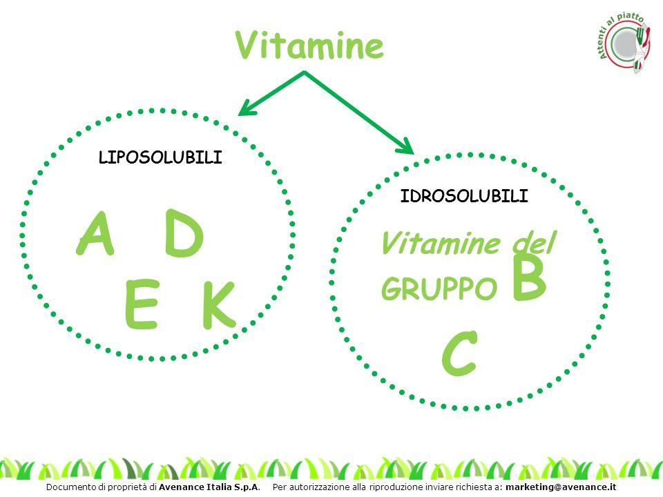 Vitamine LIPOSOLUBILI AD EK IDROSOLUBILI C Vitamine del GRUPPO B