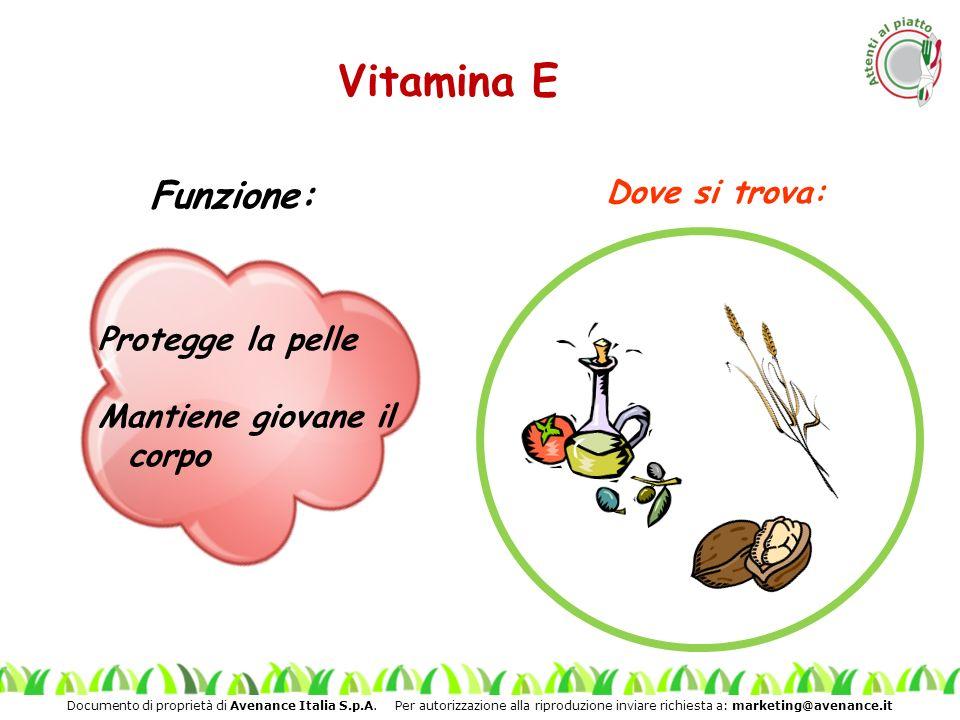 Documento di proprietà di Avenance Italia S.p.A. Per autorizzazione alla riproduzione inviare richiesta a: marketing@avenance.it Vitamina E Protegge l
