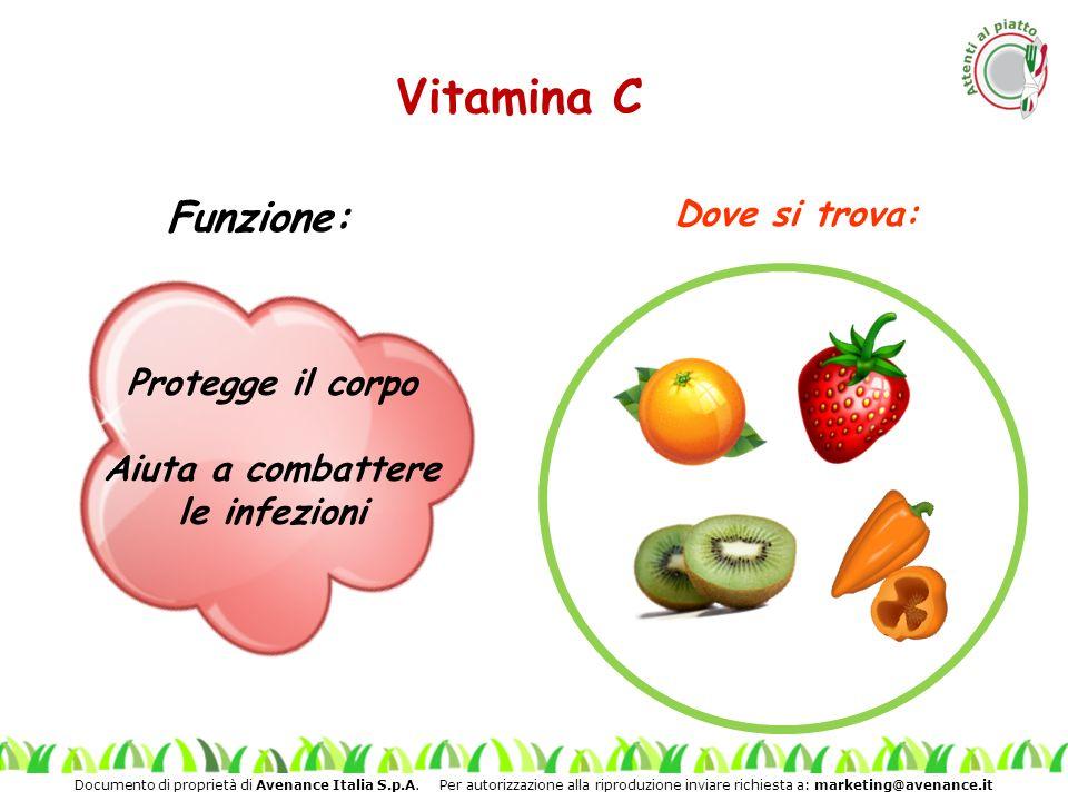 Documento di proprietà di Avenance Italia S.p.A. Per autorizzazione alla riproduzione inviare richiesta a: marketing@avenance.it Vitamina C Protegge i