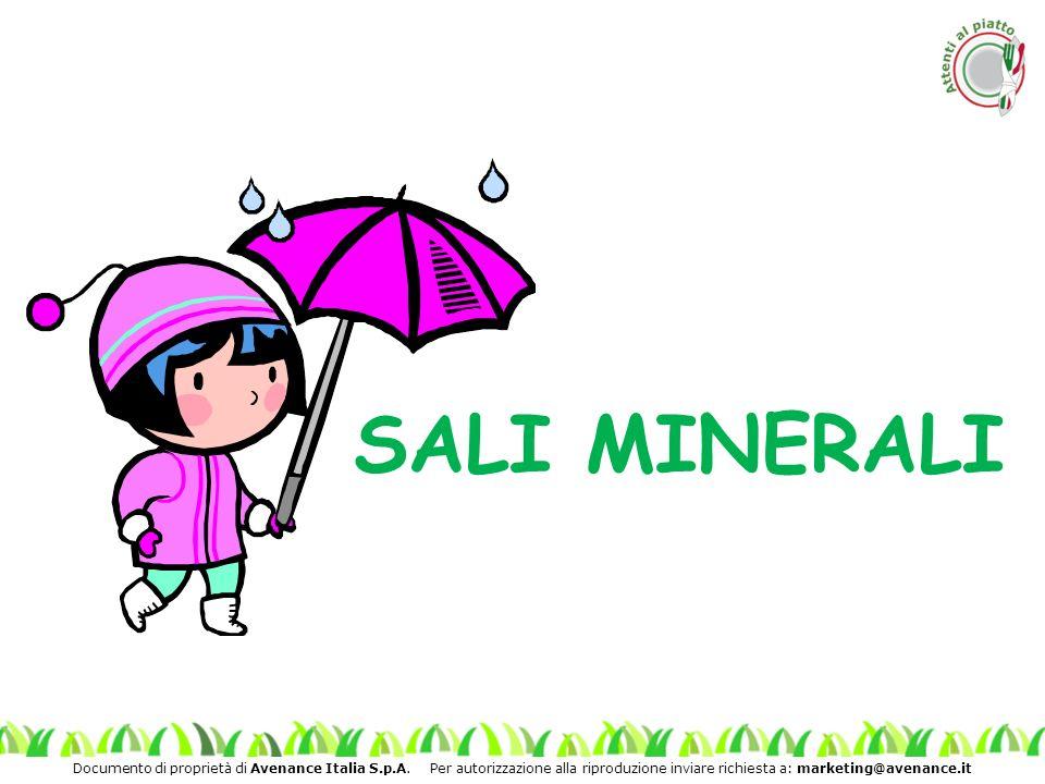 Documento di proprietà di Avenance Italia S.p.A. Per autorizzazione alla riproduzione inviare richiesta a: marketing@avenance.it SALI MINERALI