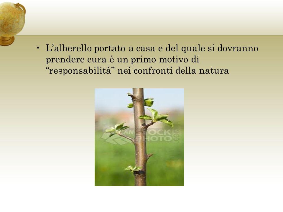 Lalberello portato a casa e del quale si dovranno prendere cura è un primo motivo di responsabilità nei confronti della natura