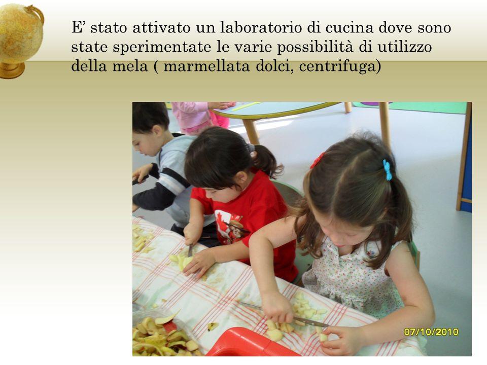 E stato attivato un laboratorio di cucina dove sono state sperimentate le varie possibilità di utilizzo della mela ( marmellata dolci, centrifuga)