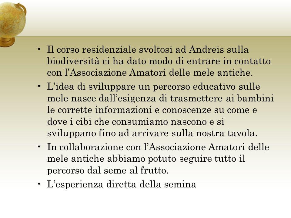 Il corso residenziale svoltosi ad Andreis sulla biodiversità ci ha dato modo di entrare in contatto con lAssociazione Amatori delle mele antiche.