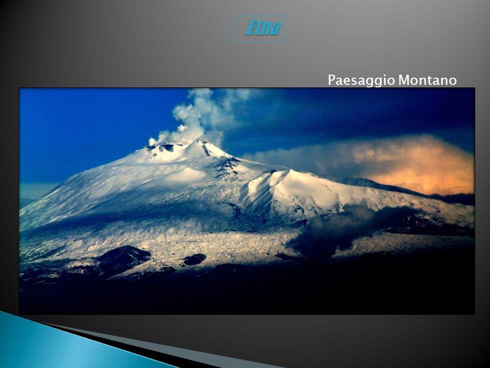 Paesaggio Montano Etna