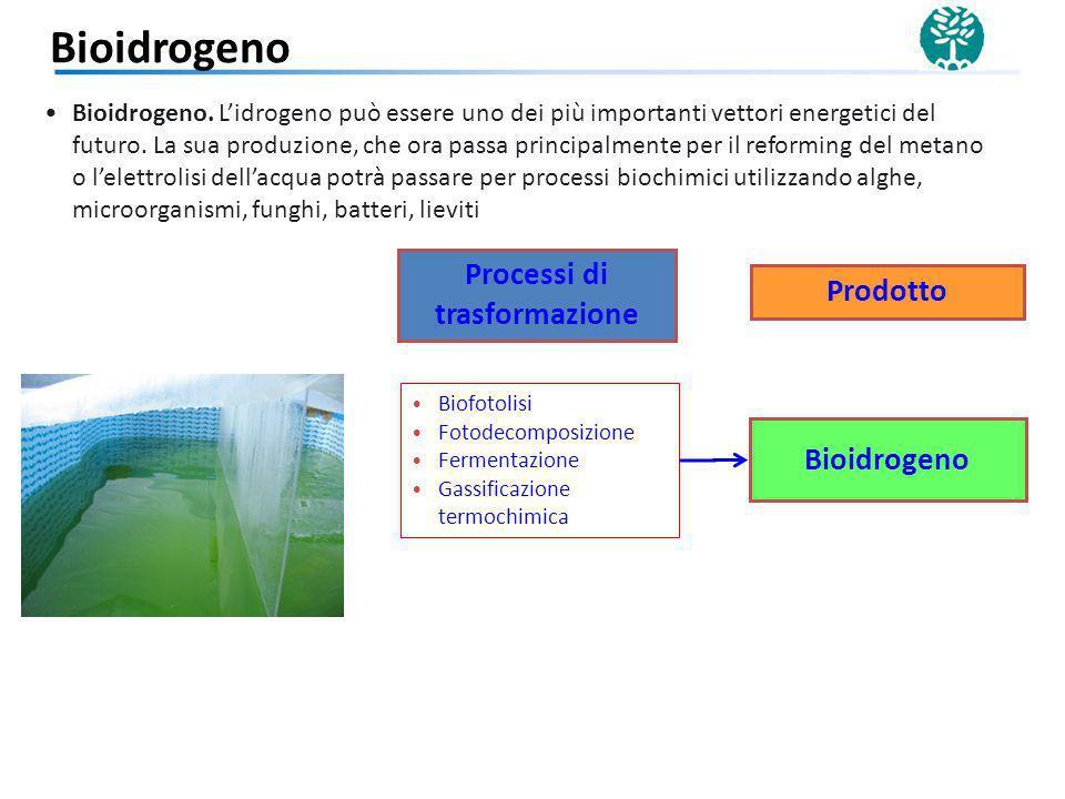 Biofotolisi Fotodecomposizione Fermentazione Gassificazione termochimica Bioidrogeno Bioidrogeno. Lidrogeno può essere uno dei più importanti vettori