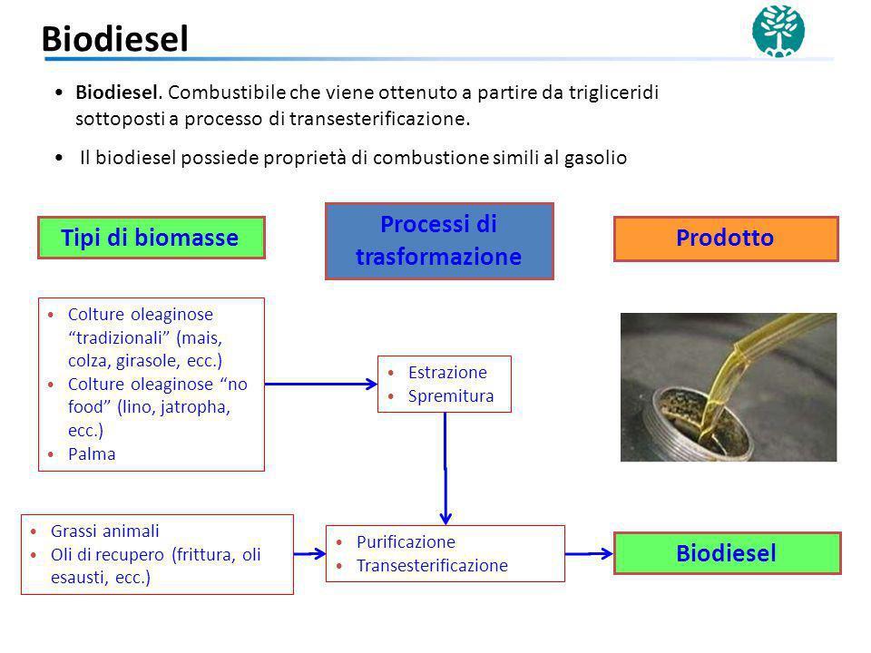 Colture saccarifere (barbabietola, canna da zucchero) Fermentazione Bioetanolo di I generazione Idrolisi Colture lignocellulosiche (legno, residui colturali, residui del processo di produzione della carta) Colture amidacee (mais, frumento, patate,ecc.) Processo SSF (idrolisi + fermentazione) Bioetanolo di II generazione Bioetanolo.