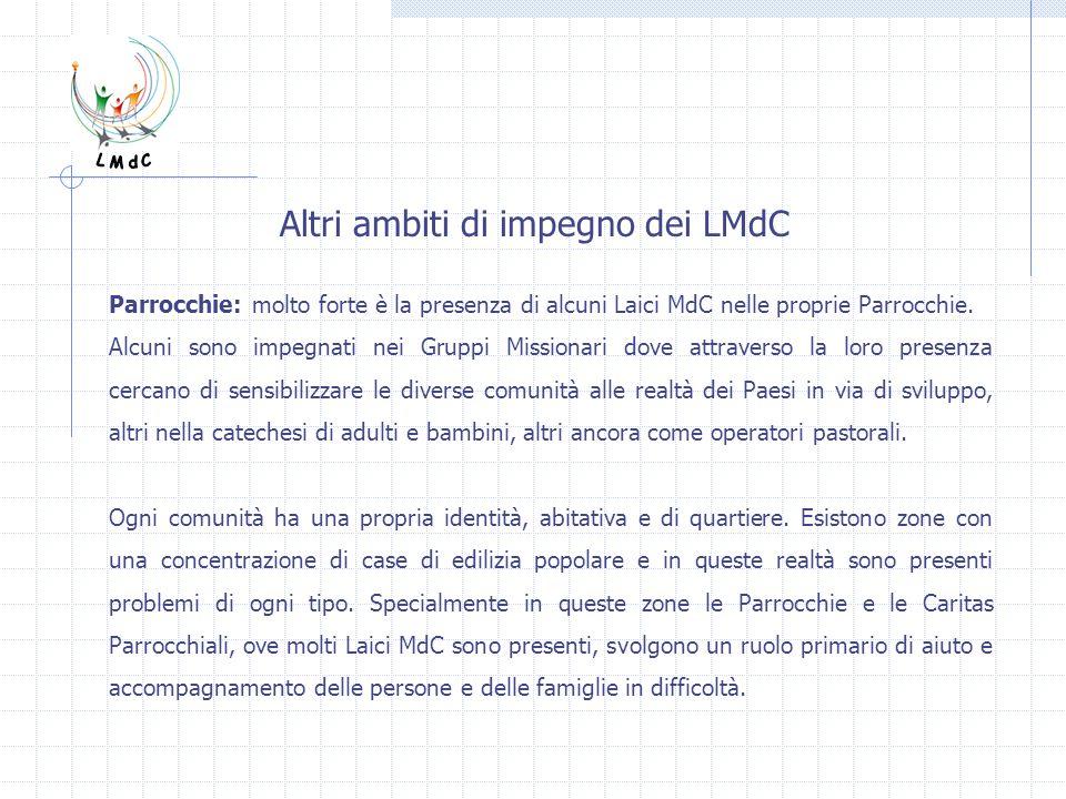 Altri ambiti di impegno dei LMdC Parrocchie: molto forte è la presenza di alcuni Laici MdC nelle proprie Parrocchie. Alcuni sono impegnati nei Gruppi