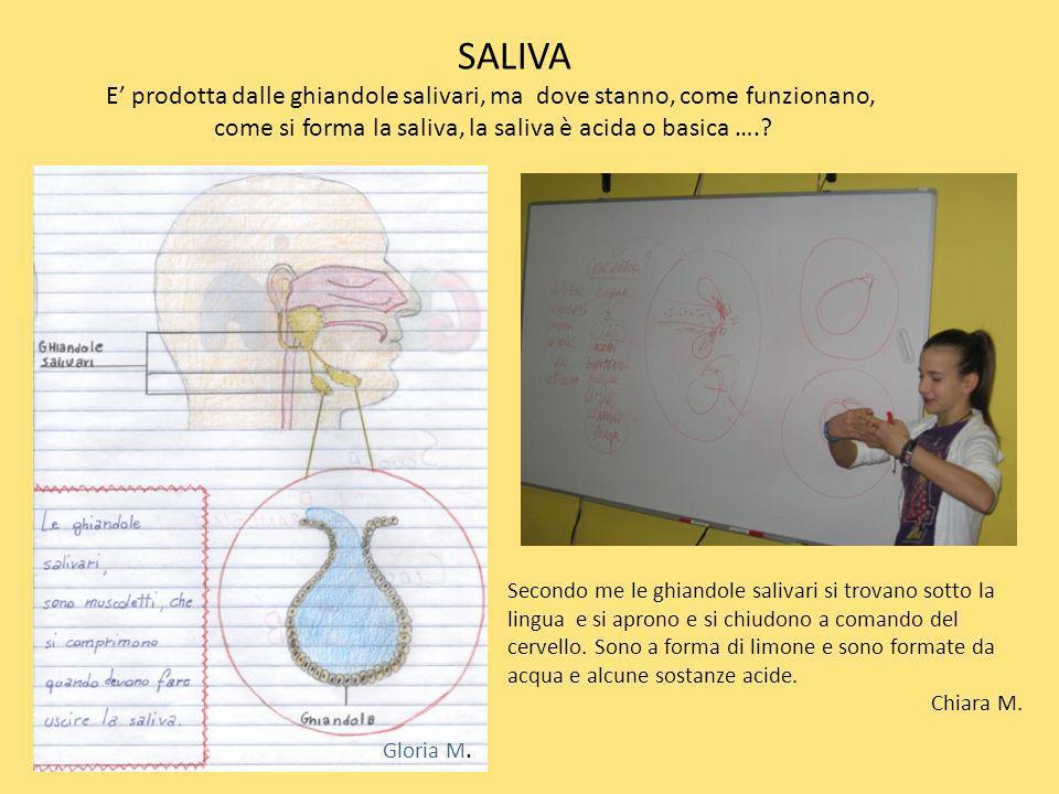 SALIVA E prodotta dalle ghiandole salivari, ma dove stanno, come funzionano, come si forma la saliva, la saliva è acida o basica ….? Secondo me le ghi