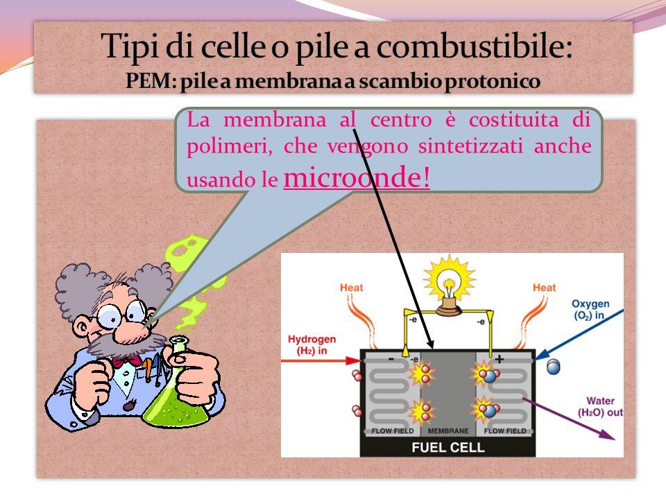 La membrana al centro è costituita di polimeri, che vengono sintetizzati anche usando le microonde!