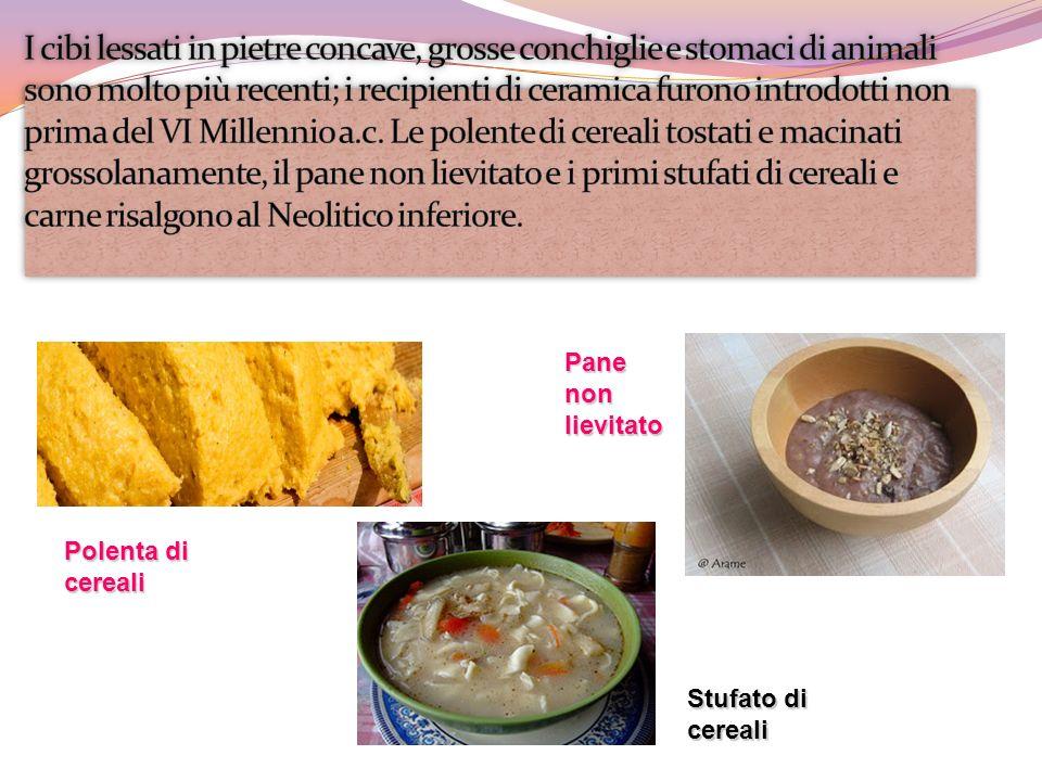 Stufato di cereali Polenta di cereali Pane non lievitato