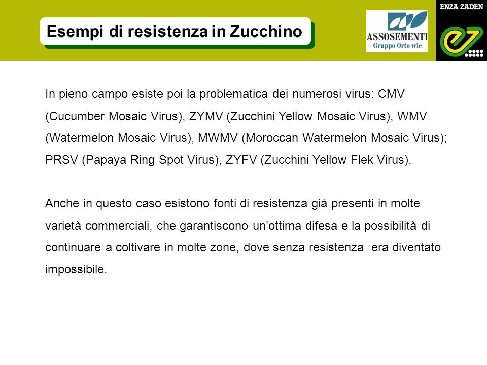 In pieno campo esiste poi la problematica dei numerosi virus: CMV (Cucumber Mosaic Virus), ZYMV (Zucchini Yellow Mosaic Virus), WMV (Watermelon Mosaic