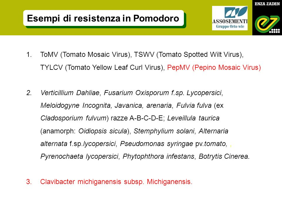 1.ToMV (Tomato Mosaic Virus), TSWV (Tomato Spotted Wilt Virus), TYLCV (Tomato Yellow Leaf Curl Virus), PepMV (Pepino Mosaic Virus) 2.Verticillium Dahliae, Fusarium Oxisporum f.sp.