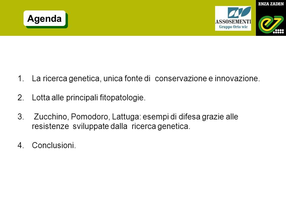 Agenda 1.La ricerca genetica, unica fonte di conservazione e innovazione. 2.Lotta alle principali fitopatologie. 3. Zucchino, Pomodoro, Lattuga: esemp