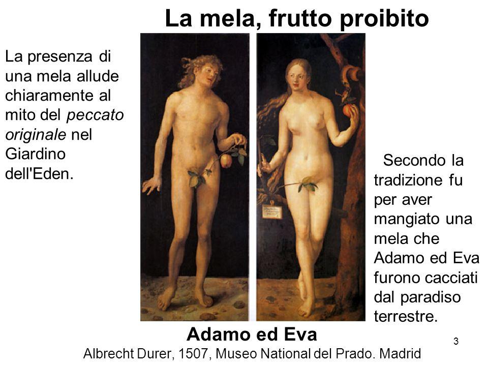 Adamo ed Eva Albrecht Durer, 1507, Museo National del Prado. Madrid La presenza di una mela allude chiaramente al mito del peccato originale nel Giard