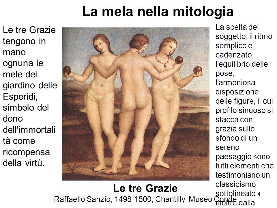 Le tre Grazie Raffaello Sanzio, 1498-1500, Chantilly, Museo Condé La mela nella mitologia Le tre Grazie tengono in mano ognuna le mele del giardino de
