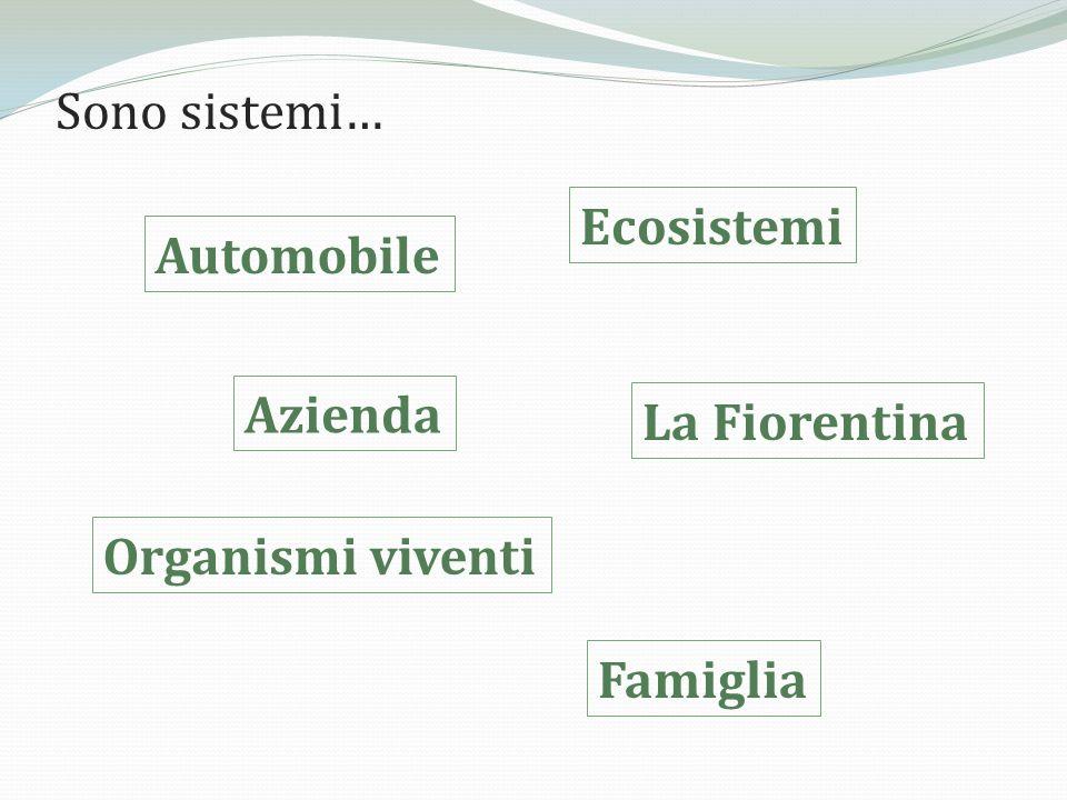 LA FAMIGLIA È UN SISTEMA La famiglia è un sistema vivente, aperto, dinamico, composto da individui che stanno in relazione tra loro.