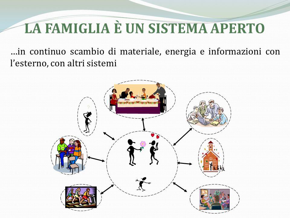 Comunità Locale Sistema di sistemi