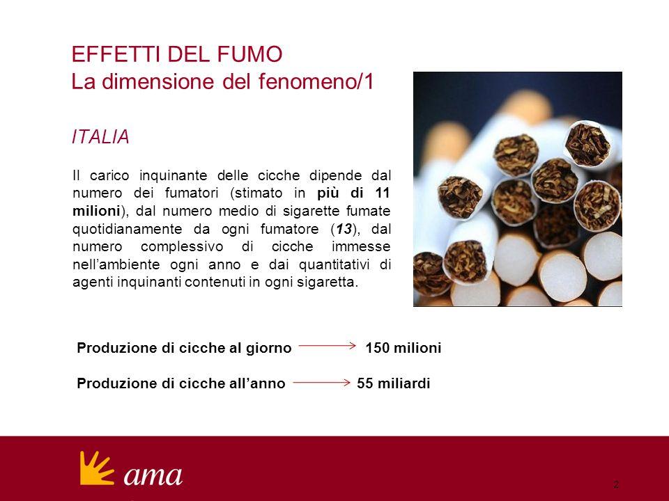 Produzione di cicche al giorno 150 milioni Produzione di cicche allanno 55 miliardi EFFETTI DEL FUMO La dimensione del fenomeno/1 ITALIA Il carico inquinante delle cicche dipende dal numero dei fumatori (stimato in più di 11 milioni), dal numero medio di sigarette fumate quotidianamente da ogni fumatore (13), dal numero complessivo di cicche immesse nellambiente ogni anno e dai quantitativi di agenti inquinanti contenuti in ogni sigaretta.