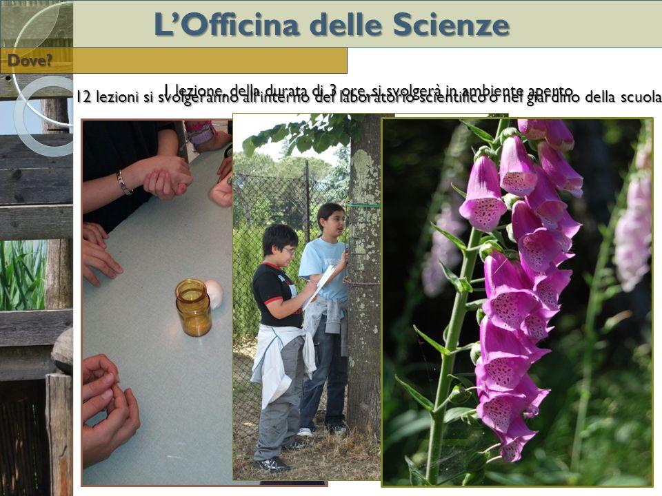 12 lezioni si svolgeranno allinterno del laboratorio scientifico o nel giardino della scuola 1 lezione, della durata di 3 ore, si svolgerà in ambiente