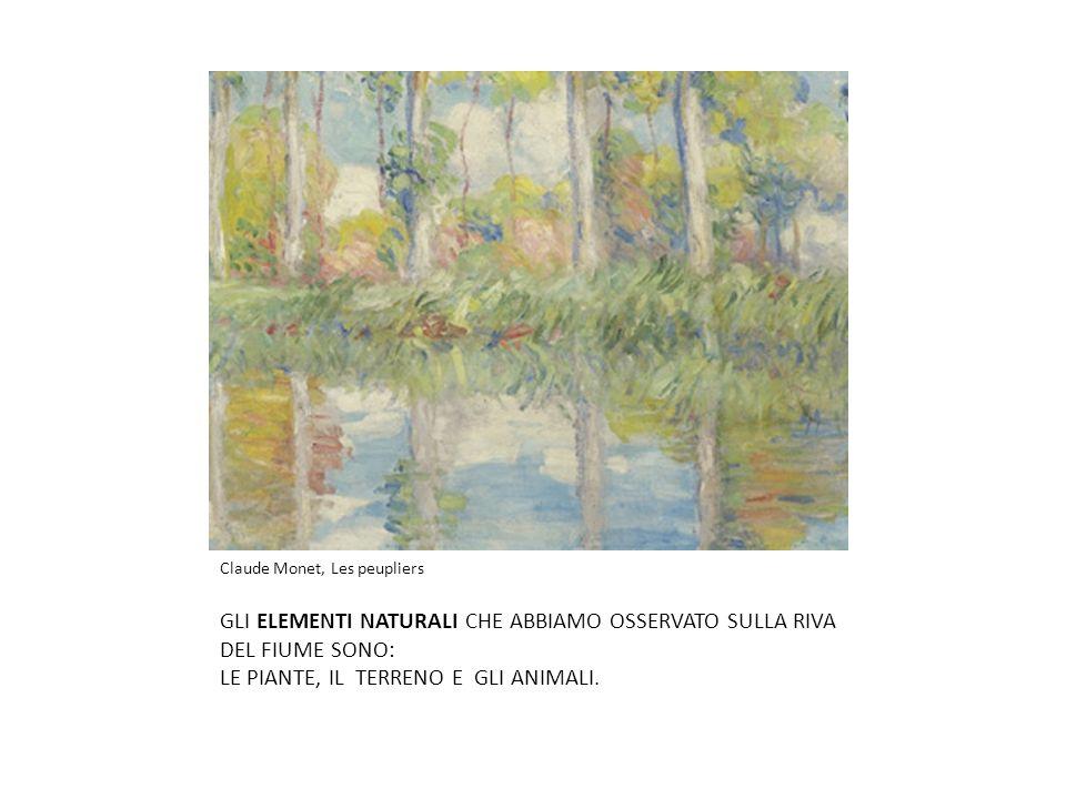 Claude Monet, Les peupliers GLI ELEMENTI NATURALI CHE ABBIAMO OSSERVATO SULLA RIVA DEL FIUME SONO: LE PIANTE, IL TERRENO E GLI ANIMALI.