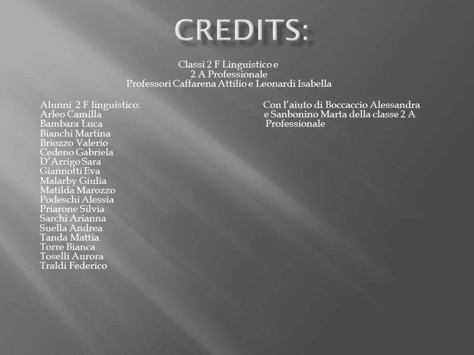 Classi 2 F Linguistico e 2 A Professionale Professori Caffarena Attilio e Leonardi Isabella Alunni 2 F linguistico: Con laiuto di Boccaccio Alessandra