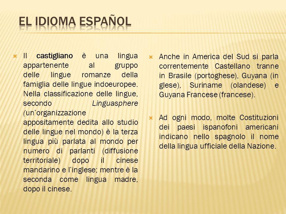 Il castigliano è una lingua appartenente al gruppo delle lingue romanze della famiglia delle lingue indoeuropee. Nella classificazione delle lingue, s