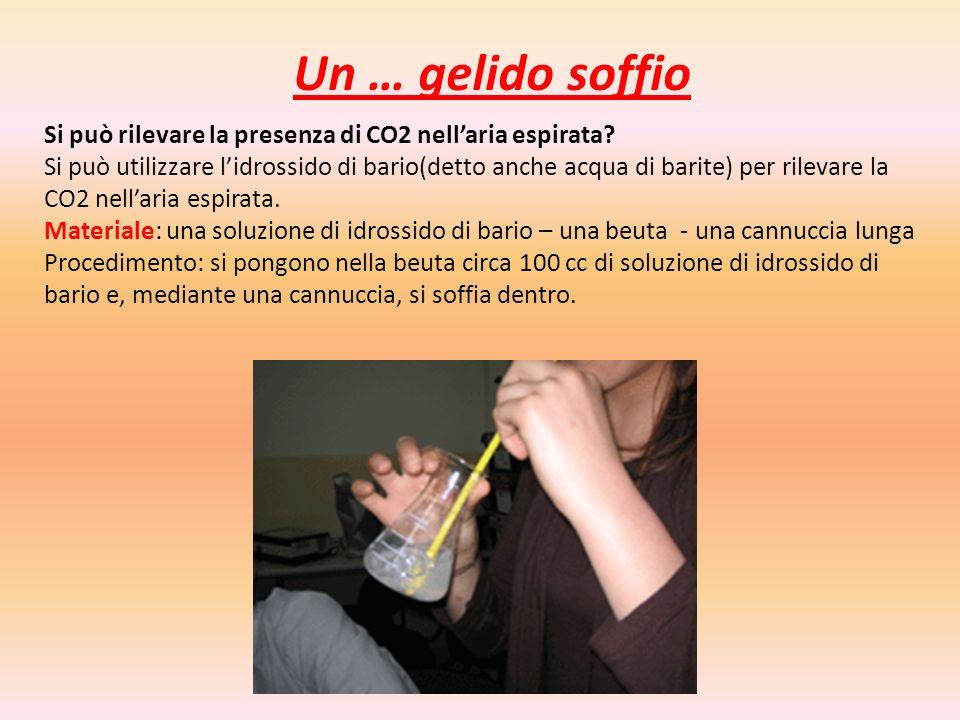 Si può rilevare la presenza di CO2 nellaria espirata? Si può utilizzare lidrossido di bario(detto anche acqua di barite) per rilevare la CO2 nellaria