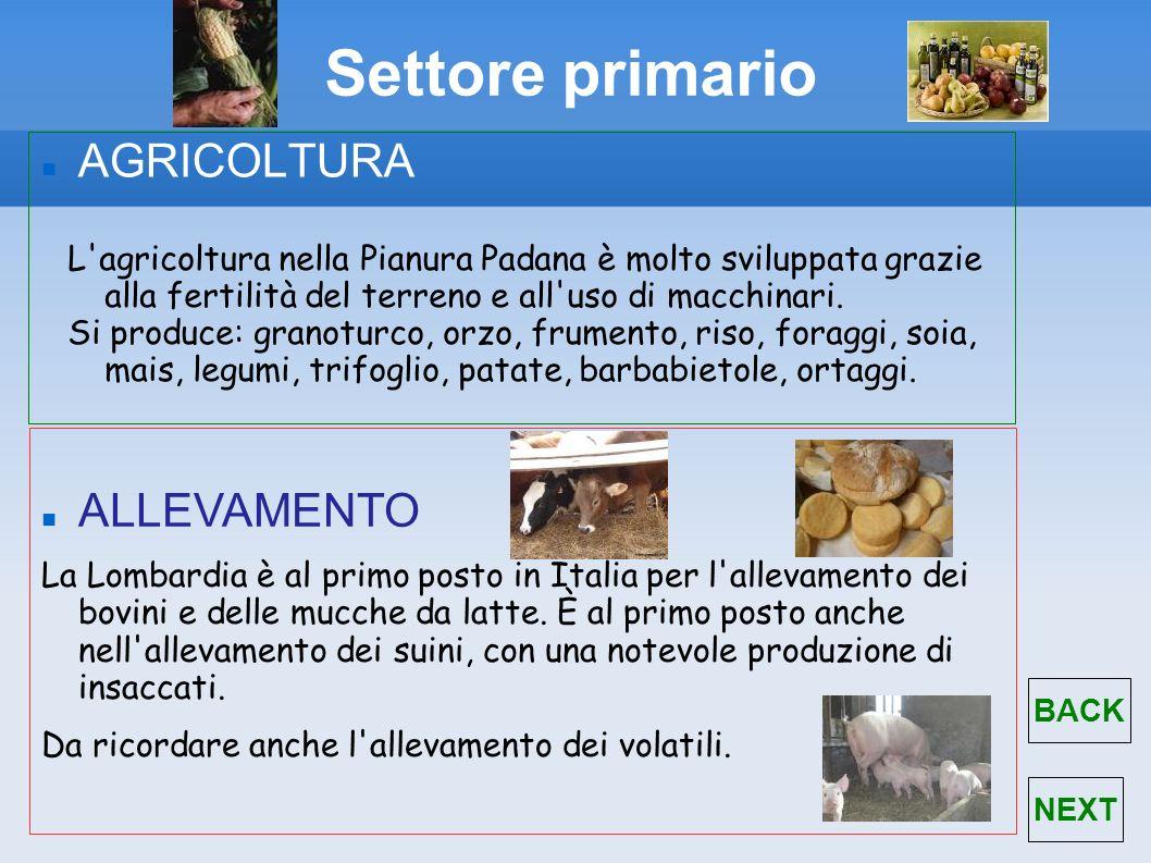 Settore primario AGRICOLTURA L'agricoltura nella Pianura Padana è molto sviluppata grazie alla fertilità del terreno e all'uso di macchinari. Si produ