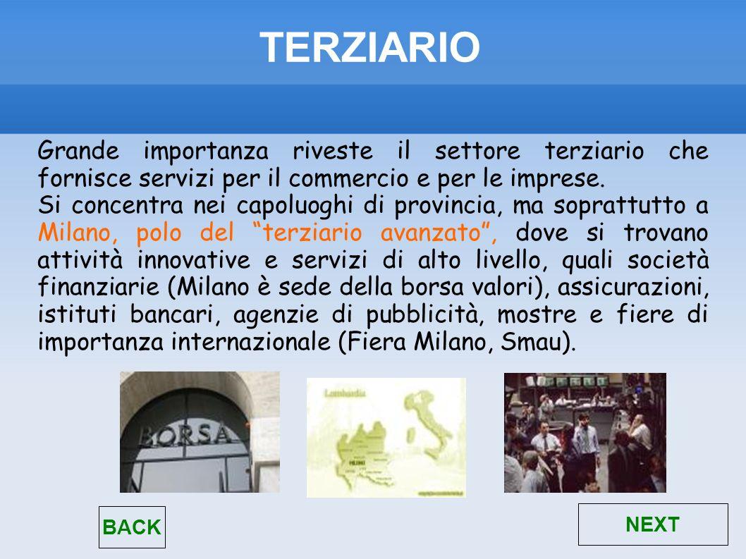 TERZIARIO Grande importanza riveste il settore terziario che fornisce servizi per il commercio e per le imprese. Si concentra nei capoluoghi di provin