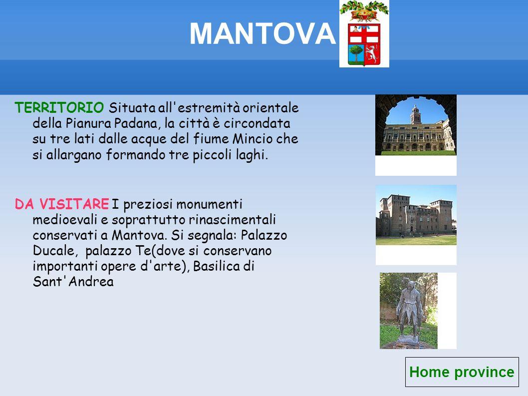 MANTOVA Home province TERRITORIO Situata all'estremità orientale della Pianura Padana, la città è circondata su tre lati dalle acque del fiume Mincio