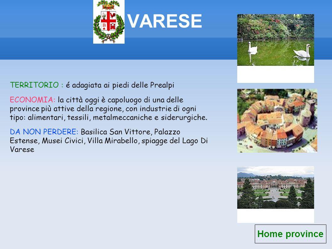 VARESE Home province TERRITORIO : é adagiata ai piedi delle Prealpi ECONOMIA: la città oggi è capoluogo di una delle province più attive della regione