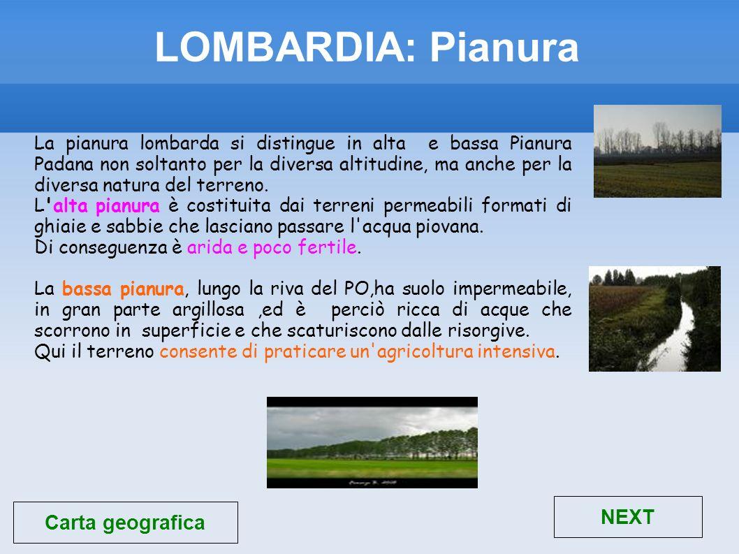 LOMBARDIA: Pianura La pianura lombarda si distingue in alta e bassa Pianura Padana non soltanto per la diversa altitudine, ma anche per la diversa nat