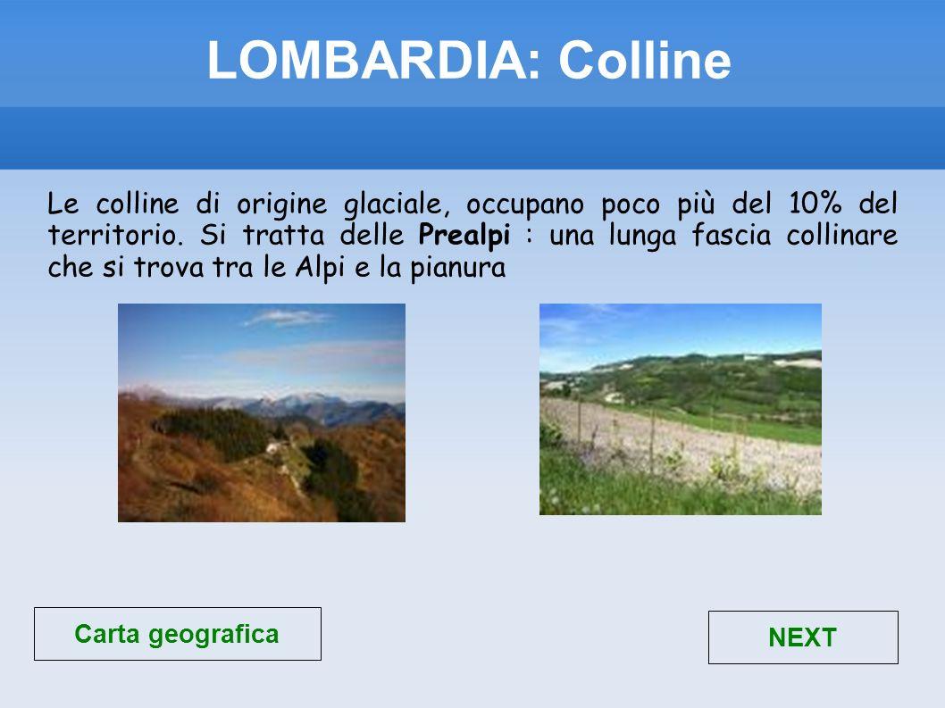 I laghi più importanti sono: lago Maggiore, lago di Como, lago di Iseo e lago di Garda.