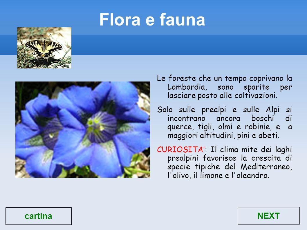 Flora e fauna Le foreste che un tempo coprivano la Lombardia, sono sparite per lasciare posto alle coltivazioni. Solo sulle prealpi e sulle Alpi si in