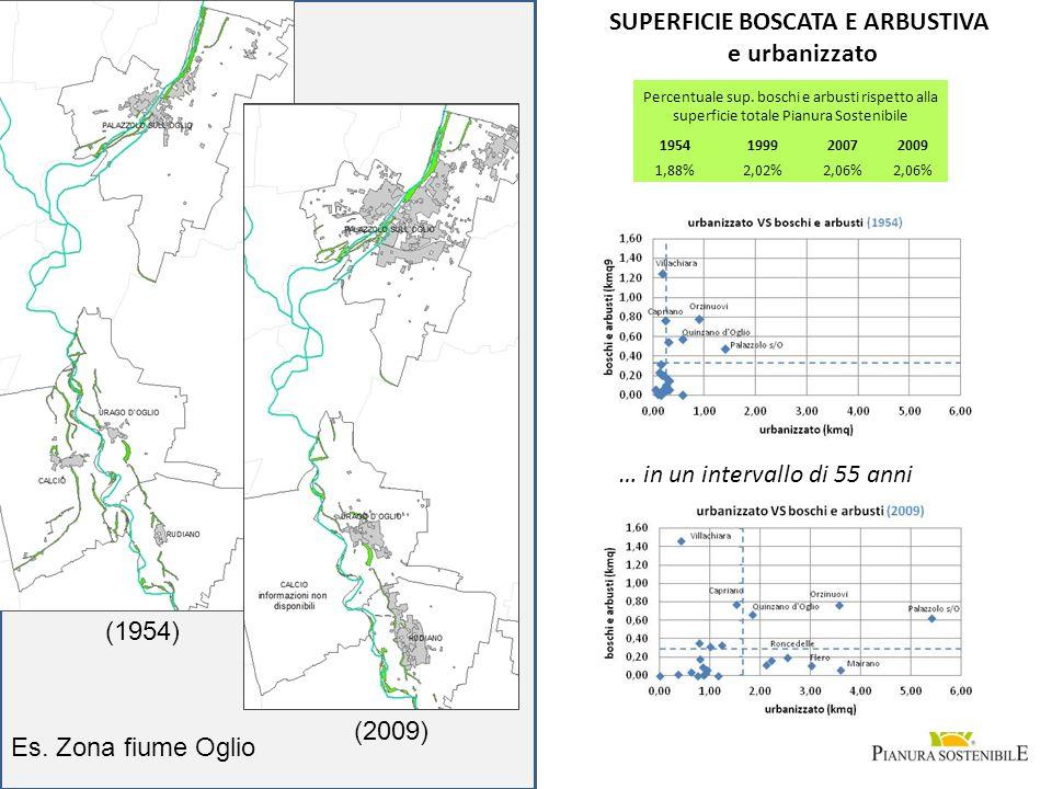 (2009) Es. Zona fiume Oglio (1954) SUPERFICIE BOSCATA E ARBUSTIVA e urbanizzato … in un intervallo di 55 anni Percentuale sup. boschi e arbusti rispet