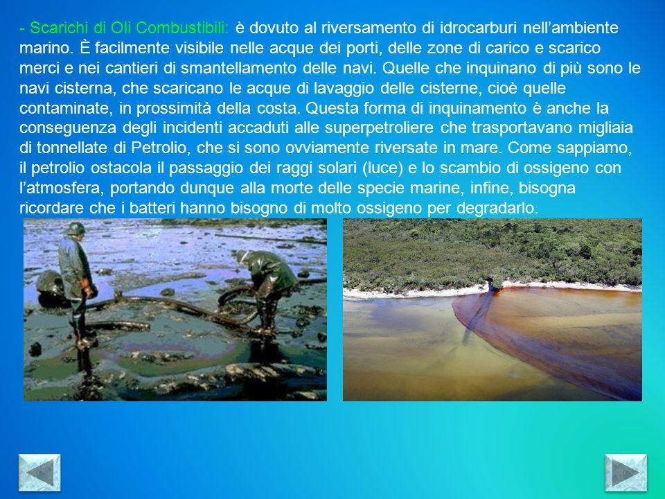 - Inquinamento dovuto alla Plastica: i rifiuti plastici sono molto pericolosi, poiché degradandosi nellacqua rilasciano sostanze altamente tossiche che vanno a danneggiare lhabitat marino e di conseguenza viene ostacolata la riproduzione tra gli organismi marini.