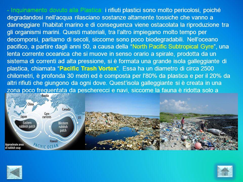 - Inquinamento dovuto alla Plastica: i rifiuti plastici sono molto pericolosi, poiché degradandosi nellacqua rilasciano sostanze altamente tossiche ch