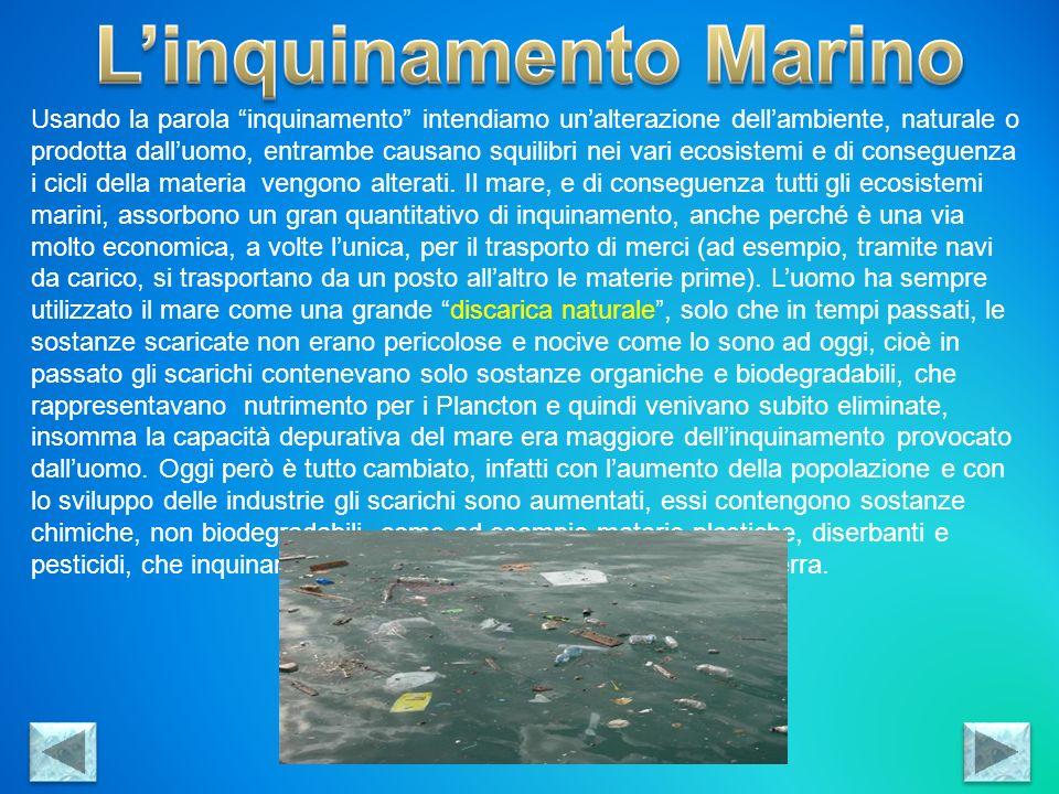 Principali cause dellinquinamento: - Scarichi Fognari: costituiscono circa il 60% dellinquinamento totale del mare, questo perché le reti fognarie non sono molto controllate, i liquami invece di passare prima nei depuratori, arrivano direttamente al mare.