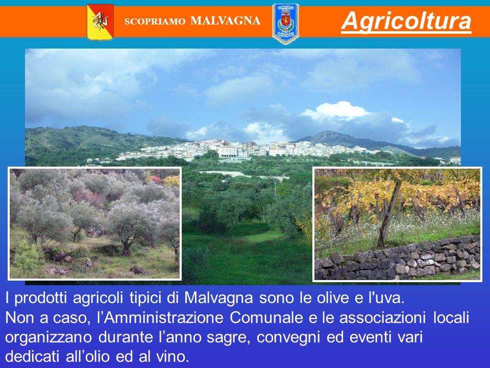Agricoltura I prodotti agricoli tipici di Malvagna sono le olive e l'uva. Non a caso, lAmministrazione Comunale e le associazioni locali organizzano d
