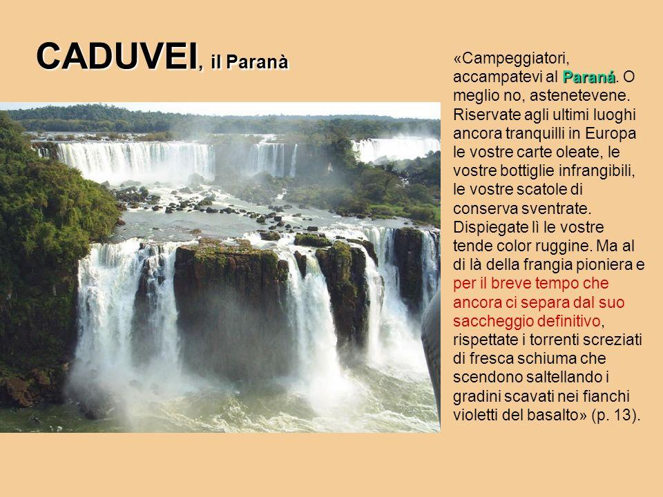 CADUVEI, il Paranà Paraná «Campeggiatori, accampatevi al Paraná. O meglio no, astenetevene. Riservate agli ultimi luoghi ancora tranquilli in Europa l