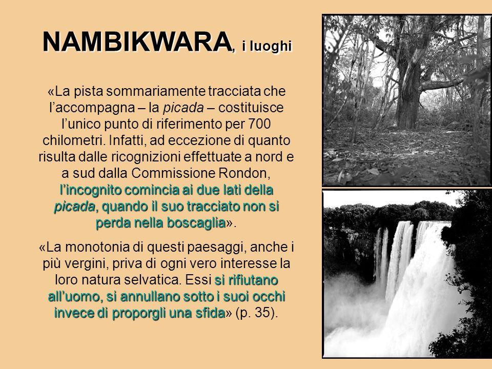 NAMBIKWARA, i luoghi lincognito comincia ai due lati della picada, quando il suo tracciato non si perda nella boscaglia «La pista sommariamente tracci