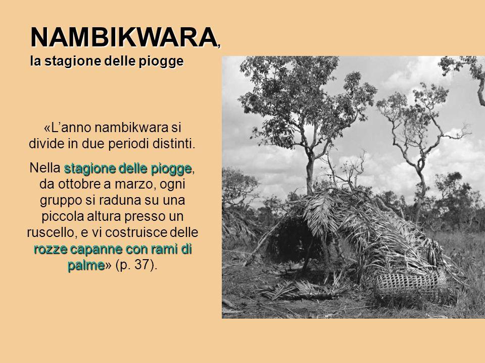 NAMBIKWARA, la stagione delle piogge «Lanno nambikwara si divide in due periodi distinti. stagione delle piogge rozze capanne con rami di palme Nella