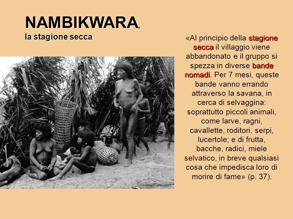 NAMBIKWARA, la stagione secca stagione secca bande nomadi «Al principio della stagione secca il villaggio viene abbandonato e il gruppo si spezza in d